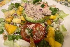 Avocado & Mango salad with Tuna Salad